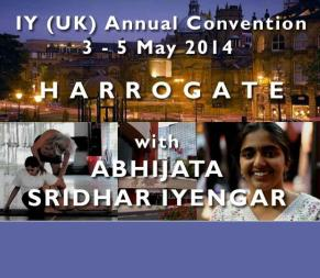 Iyengaryoga annual Convention 2014-2